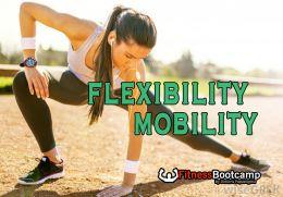F.B. FLEXIBILITY MOBILITY